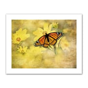 ArtWall Antique Maps 'Butterfly in Yellow' by Antonio Raggio Photographic Print on Rolled Canvas