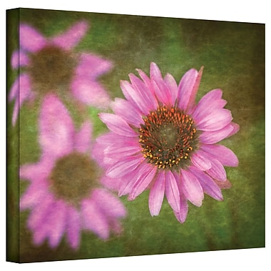 ArtWall Flowers in Focus III' by Antonio Raggio Photographic Print on Canvas; 18'' H x 24'' W