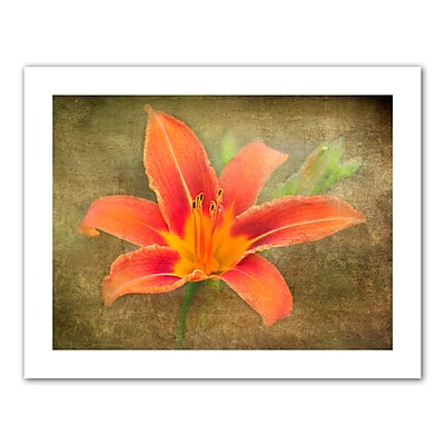 ArtWall Flowers in Focus IV' by Antonio Raggio Photographic Print on Rolled Canvas; 40'' H x 52'' W