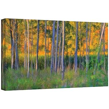ArtWall Stumpy Basin' by Antonio Raggio Print of Painting on Wrapped Canvas; 12'' H x 18'' W