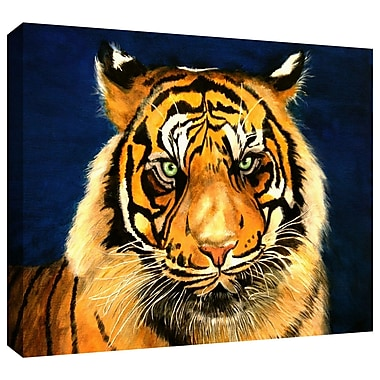 ArtWall 'Tiger by Lins' by Lindsey Janich Photographic Print on Wrapped Canvas; 12'' H x 18'' W