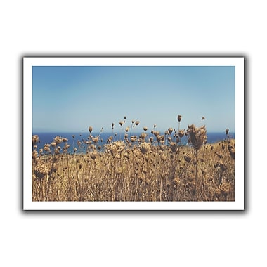 ArtWall Close Up Field' by John Black Photographic Print on Rolled Canvas; 28'' H x 40'' W