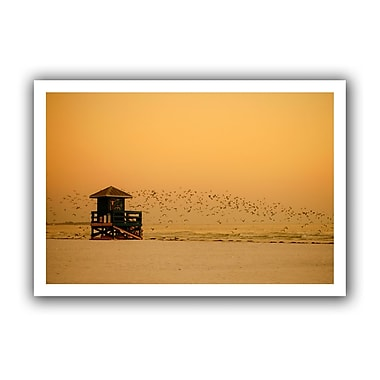 ArtWall 1095aa' by Lindsey Janich Photographic Print on Rolled Canvas; 28'' H x 40'' W