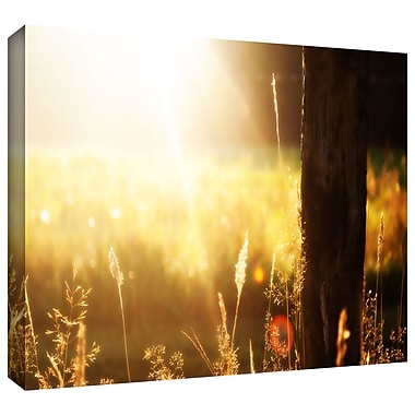 ArtWall 'Summertime' by John Black Photographic Print on Wrapped Canvas; 16'' H x 24'' W