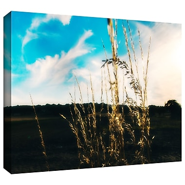 ArtWall 'Field' by John Black Photographic Print on Wrapped Canvas; 12'' H x 18'' W