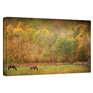 ArtWall Pasture' by Antonio Raggio Photographic Print on Canvas; 24'' H x 48'' W