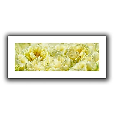 ArtWall Yellow' by Cora Niele Painting Print on Rolled Canvas; 12'' H x 28'' W