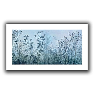 ArtWall Wildflowers Early' by Cora Niele Graphic Art on Rolled Canvas; 22'' H x 40'' W