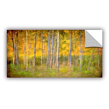 ArtWall Into The Wood by Antonio Raggio Art Appeelz Removable Wall Mural; 24'' H x 48'' W x 0.1'' D