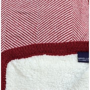 Brielle Cheshire Herringbone Throw Blanket; Brick Red