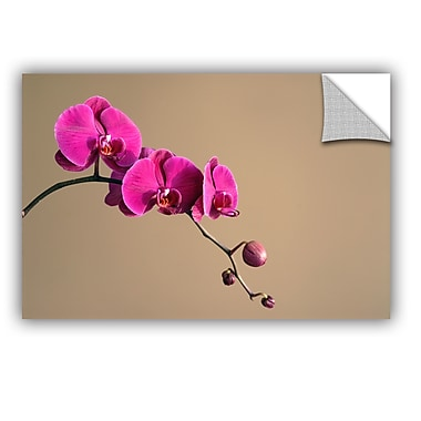ArtWall Magenta Orchid by Elena Ray Art Appeelz Removable Wall Mural; 16'' H x 24'' W x 0.1'' D