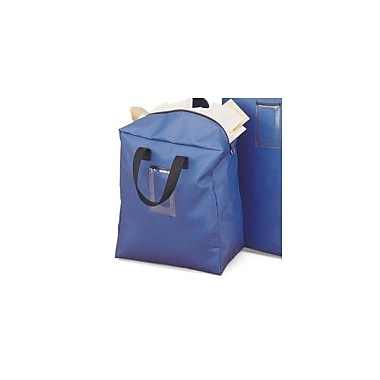 Charnstrom Bulk Mail Security Bank Bag; Small