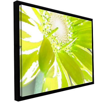 ArtWall 'Gerber Time' by Herb Dickinson Framed Painting Print on Wrapped Canvas; 14'' H x 18'' W