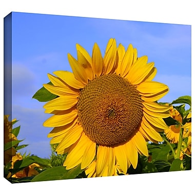 ArtWall 'Sunflower' by Lindsey Janich Photographic Print on Wrapped Canvas; 32'' H x 48'' W