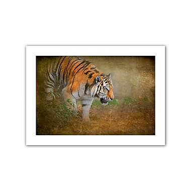 ArtWall On the Prowl' by Antonio Raggio Photographic Print on Rolled Canvas; 20'' H x 28'' W