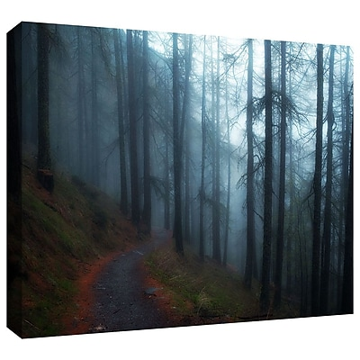 ArtWall 'Woods' by John Black Photographic Print on Wrapped Canvas; 12'' H x 18'' W