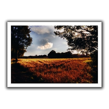 ArtWall Farmville' by John Black Photographic Print on Rolled Canvas; 16'' H x 22'' W