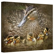 ArtWall Baby Ducks' by Antonio Raggio Photographic Print on Canvas; 24'' H x 32'' W