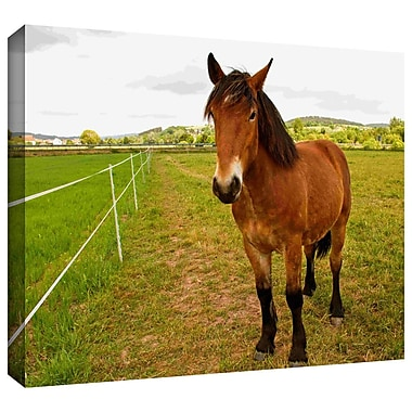 ArtWall 'Horse Painted II' by Lindsey Janich Photographic Print on Wrapped Canvas; 18'' H x 24'' W