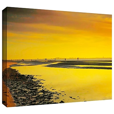 ArtWall 'Mellow Yellow Morning' by Steven Ainsworth Photographic Print on Wrapped Canvas