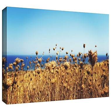 ArtWall 'Close Up Field' by John Black Photographic Print on Wrapped Canvas; 24'' H x 36'' W