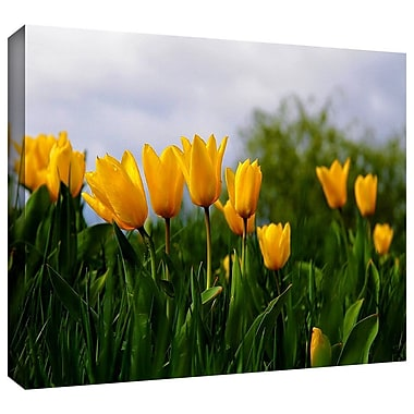 ArtWall 'Tulips' by Lindsey Janich Photographic Print on Wrapped Canvas; 32'' H x 48'' W
