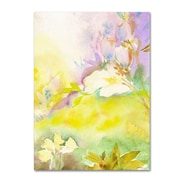 "Trademark Fine Art SG5701-C1824GG ""Enchanted"" by Sheila Golden 24"" x 18"" Frameless Art"
