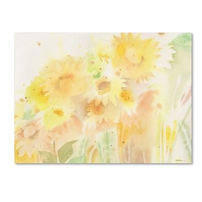 Trademark Fine Art SG5713-C1419GG