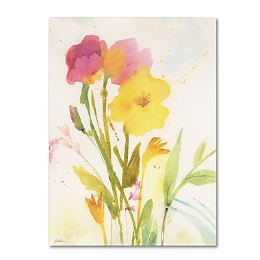 Trademark Fine Art SG5714-C2432GG