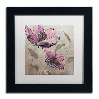 Trademark Fine Art WAP0106-B1111MF