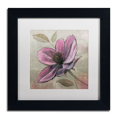 Trademark Fine Art WAP0107-B1111MF