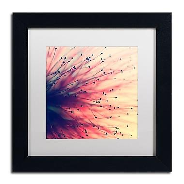 Trademark Fine Art BC0127-B1111MF