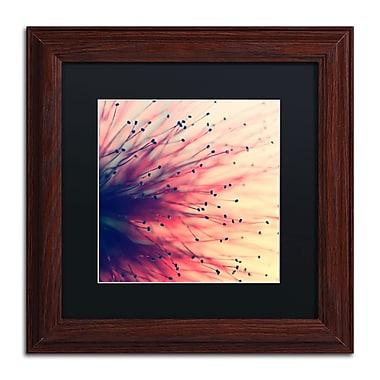 Trademark Fine Art BC0127-W1111BMF