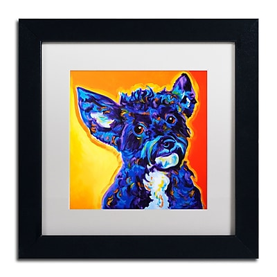 Trademark Fine Art ALI0579-B1111MF