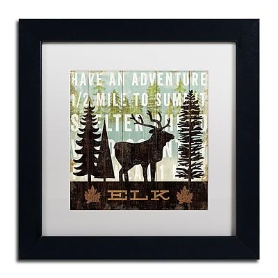 Trademark Fine Art WAP0121-B1111MF