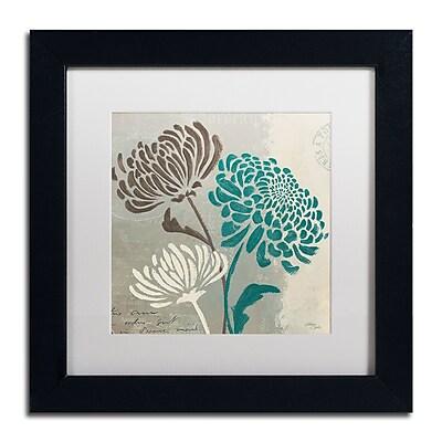 Trademark Fine Art WAP0135-B1111MF
