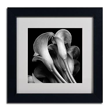 Trademark Fine Art ALI0288-B1111MF