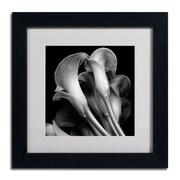 "Trademark Fine Art ALI0288-B-MF ""Lillies"" by Michael Harrison Framed Art, White Matted"