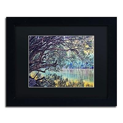 Trademark Fine Art BC0115-B1114BMF