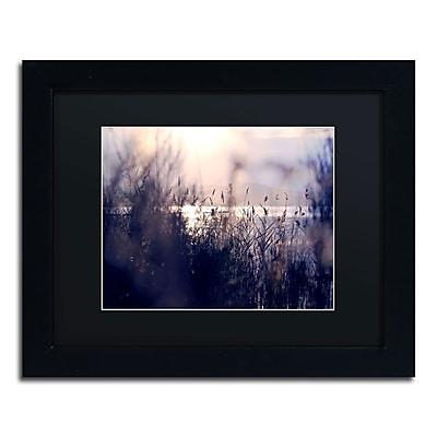 Trademark Fine Art BC0116-B1114BMF