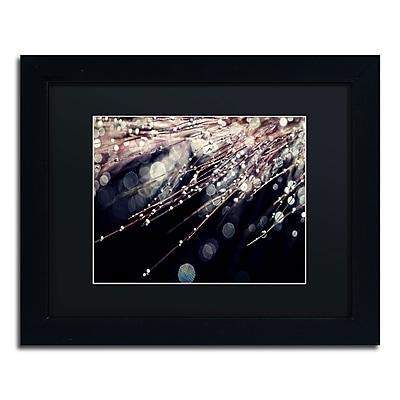 Trademark Fine Art BC0129-B1114BMF