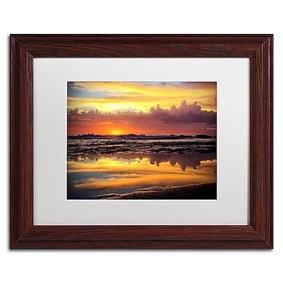 Trademark Fine Art BC0132-W1114MF