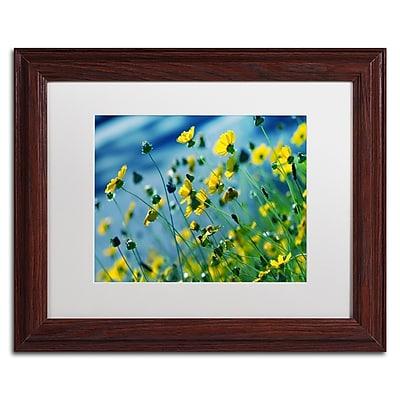 Trademark Fine Art BC0141-W1114MF