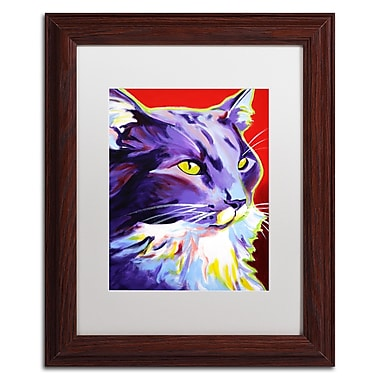Trademark Fine Art ALI0560-W1114MF