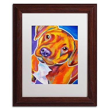 Trademark Fine Art ALI0551-W1114MF