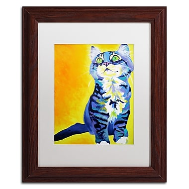Trademark Fine Art ALI0567-W1114MF