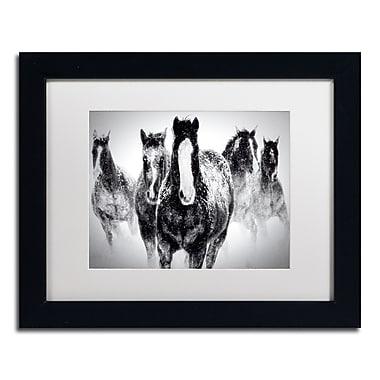 Trademark Fine Art WAP0103-B1114MF