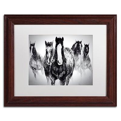 Trademark Fine Art WAP0103-W1114MF