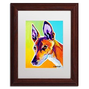 Trademark Fine Art ALI0580-W1114MF