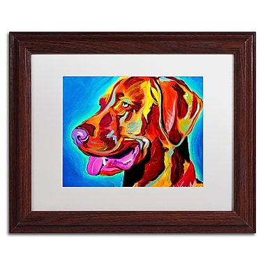Trademark Fine Art ALI0590-W1114MF
